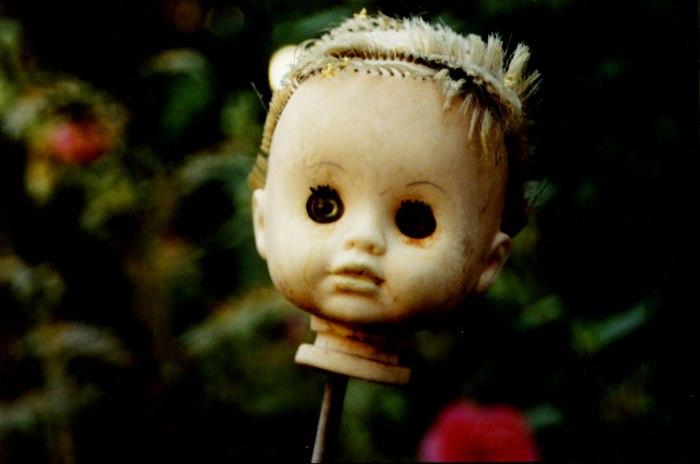 dolly-1538313