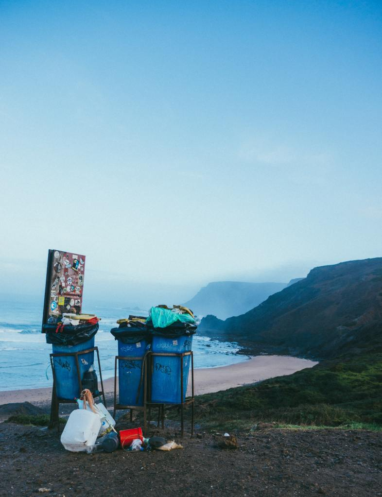 Photo of trash cans (one holding a piece of artwork) foregrounded in a beach landscape